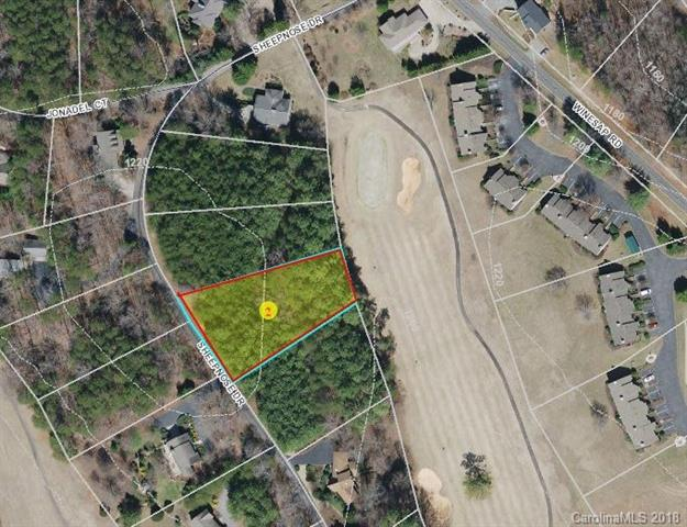 Lot 5 Sheepnose Drive, Lake Lure, NC 28746 (#3402430) :: Leigh Brown and Associates with RE/MAX Executive Realty