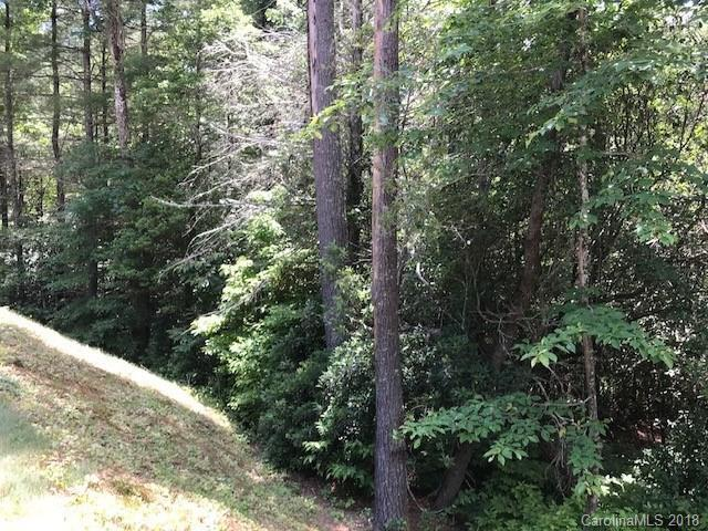 25 Bailey Lane G25, Sapphire, NC 28774 (#3403258) :: Exit Mountain Realty