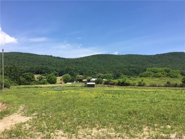 TBD Auburn Sky Trail, Mills River, NC 28759 (#3403571) :: Puffer Properties