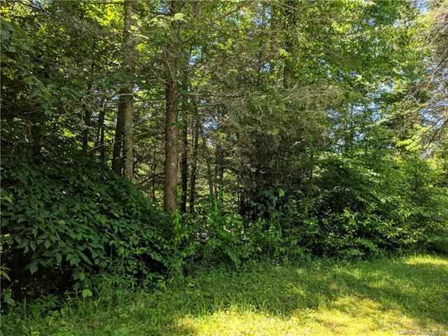 9999 Bear River Lodge Trail #31, Marshall, NC 28753 (#3403746) :: Puffer Properties