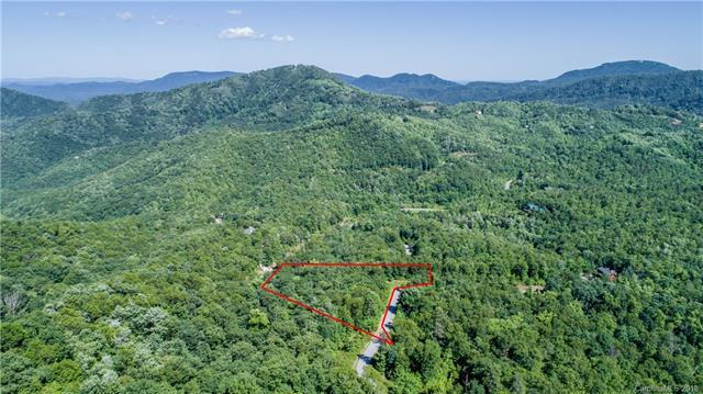 191 Catawba Falls Parkway, Black Mountain, NC 28711 (#3404415) :: Cloninger Properties