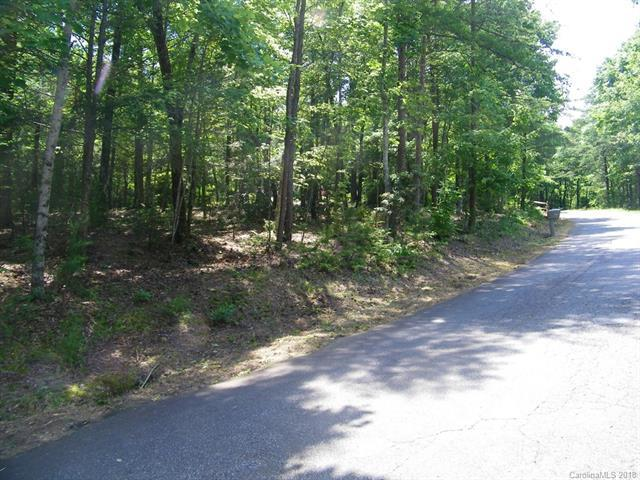 LOT 236 Wren Court, Lake Lure, NC 28746 (#3405059) :: Odell Realty Group