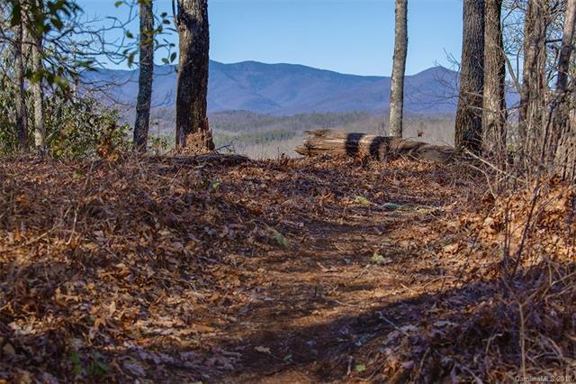 1349 Ridge Road #10, Lake Toxaway, NC 28747 (#3405073) :: Exit Mountain Realty