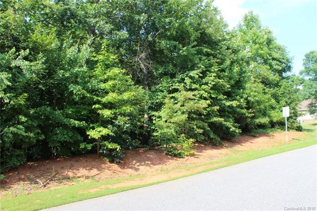 263 Donsdale Drive, Statesville, NC 28625 (#3405183) :: High Performance Real Estate Advisors