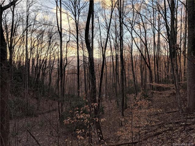 99999 Hunting Lodge Drive #7, Black Mountain, NC 28711 (#3405442) :: Exit Realty Vistas