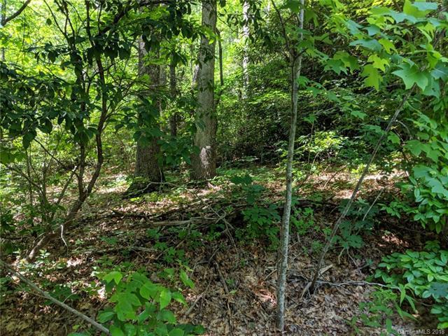 0 Windjammer Way #158, Hendersonville, NC 28791 (#3405614) :: Exit Mountain Realty