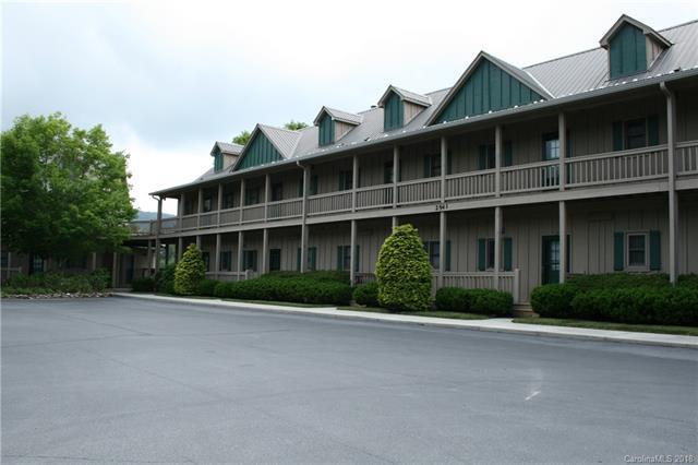 2541 Wolf Laurel Road #208, Burnsville, NC 28754 (#3405798) :: Exit Realty Vistas