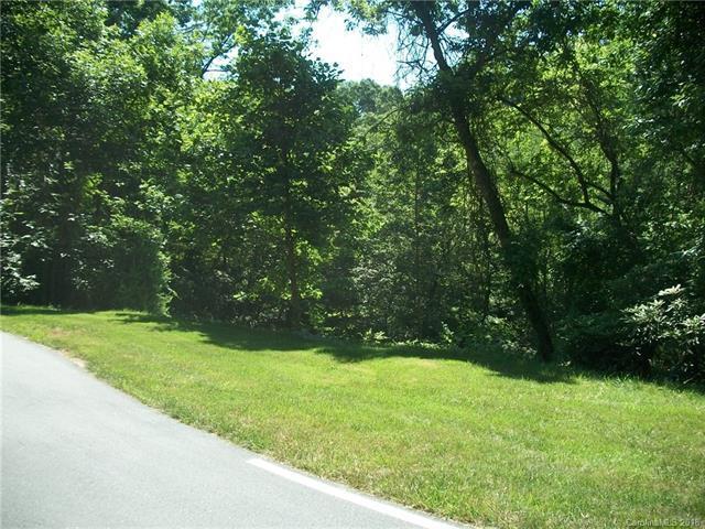720 Black Gum Court #349, Hendersonville, NC 28739 (#3405960) :: Caulder Realty and Land Co.