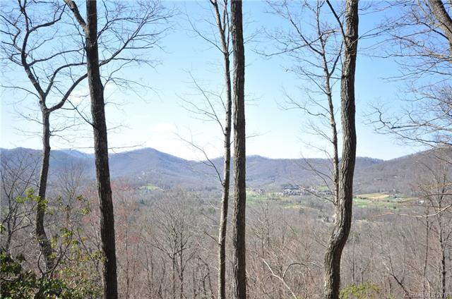 293 Secluded Hills Lane Lot 66, Arden, NC 28704 (#3406099) :: Century 21 First Choice
