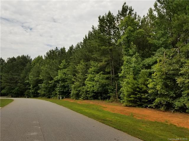 6694 Goose Point Drive #147, Denver, NC 28037 (#3406573) :: The Ramsey Group