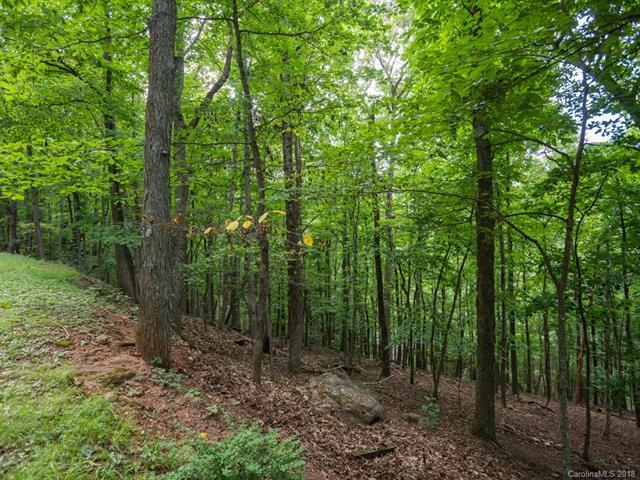 Lot 204 Sourwood Drive, Mills River, NC 28759 (#3407162) :: Team Southline