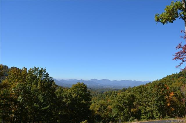81 Starling Pass #90, Asheville, NC 28804 (#3407454) :: Besecker Homes Team