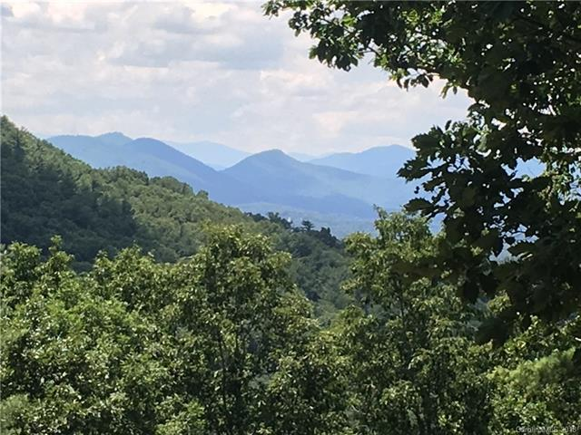 91 Starling Pass 91 And 92, Asheville, NC 28804 (#3407455) :: Besecker Homes Team