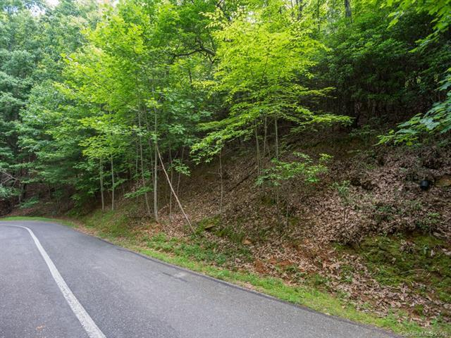 Lot 206 Sugar Maple Drive, Mills River, NC 28759 (#3407531) :: RE/MAX Metrolina
