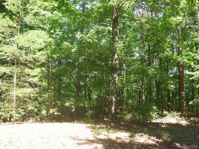 LOT 8 Whitney Boulevard, Lake Lure, NC 28746 (#3407697) :: Caulder Realty and Land Co.