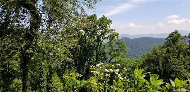 Lot 55 Peak Avenue, Waynesville, NC 28786 (#3408273) :: Exit Mountain Realty