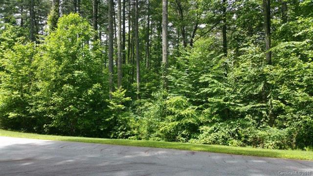 TBD Mountain Brook Trail L-49, Brevard, NC 28712 (#3408510) :: Caulder Realty and Land Co.
