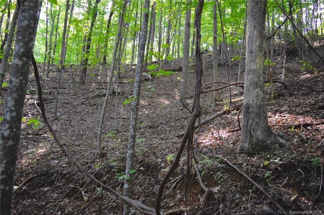 Tract 77 Long Ridge Trail, Lenoir, NC 28645 (#3408733) :: MECA Realty, LLC