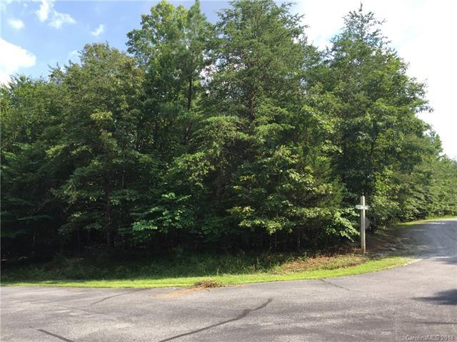 Lot# 50 Elliott Lane, Rutherfordton, NC 28139 (#3409062) :: Zanthia Hastings Team