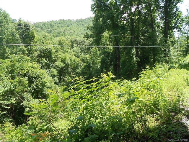 Lot 30 Coon Creek Road #30, Franklin, NC 28734 (#3409883) :: Rinehart Realty