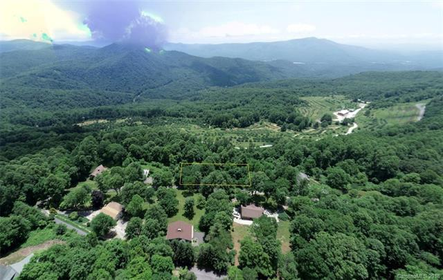 TBD Apple Lane 5&6, Spruce Pine, NC 28777 (#3410166) :: LePage Johnson Realty Group, LLC