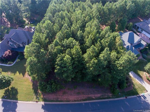 3220 Lake Pointe Drive #156, Belmont, NC 28012 (#3410363) :: The Premier Team at RE/MAX Executive Realty