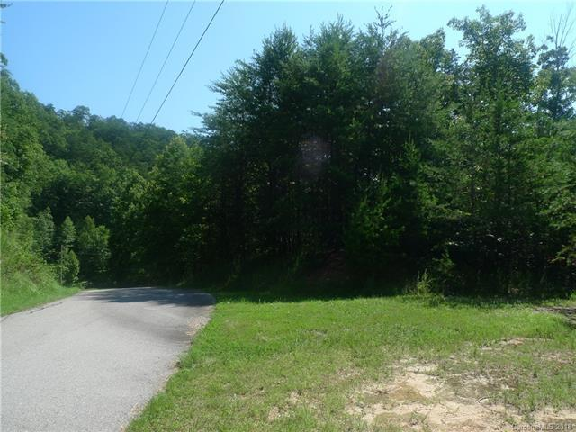 455 Laurel Valley Drive #28, Marion, NC 28752 (#3410413) :: RE/MAX Four Seasons Realty