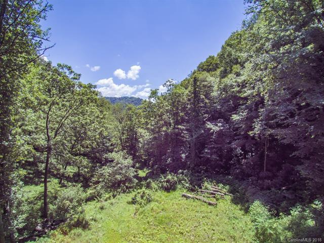 0 Ellis Honeycutt Lane, Green Mountain, NC 28740 (#3410751) :: Burton Real Estate Group