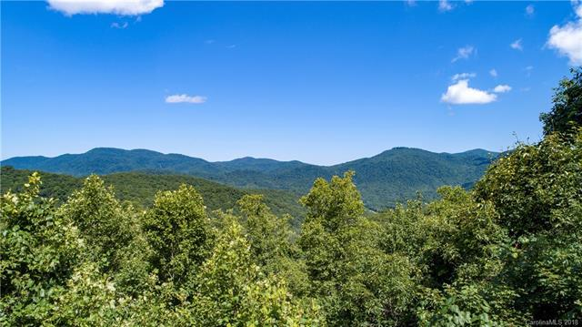 9999 Lower Flat Creek Road 5A, Black Mountain, NC 28711 (#3411288) :: RE/MAX Four Seasons Realty