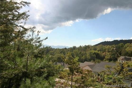 74 Hawtree Court Lot 264, Weaverville, NC 28787 (#3411324) :: Puffer Properties