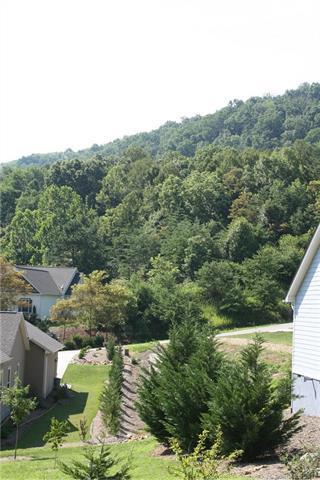 78 Hawtree Court Lot 263, Weaverville, NC 28787 (#3411333) :: Rinehart Realty