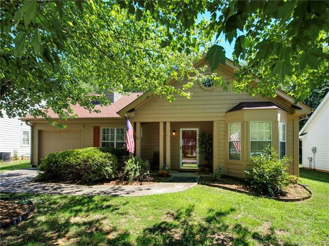 262 Indian Paint Brush Drive, Mooresville, NC 28115 (#3411570) :: LePage Johnson Realty Group, LLC
