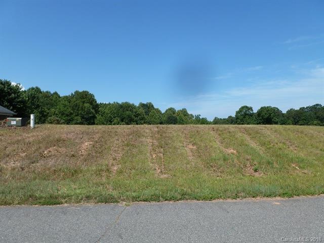 Lot 10 Gourdvine Drive #10, Marshville, NC 28103 (#3411963) :: RE/MAX Four Seasons Realty
