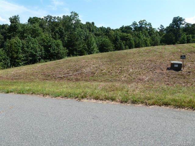 Lot 17 Gourdvine Drive #17, Marshville, NC 28103 (#3411969) :: Zanthia Hastings Team