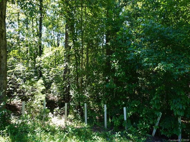 Lot 62 Bramblewood Drive #62, Lake Lure, NC 28746 (#3412572) :: Exit Mountain Realty
