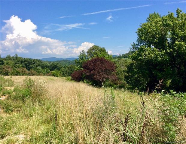 35 Firefly Ridge #1, Alexander, NC 28701 (#3412595) :: RE/MAX Four Seasons Realty