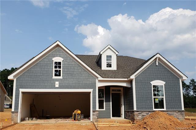 14209 Goldenrod Trace Road, Charlotte, NC 28278 (#3412890) :: Besecker Homes Team