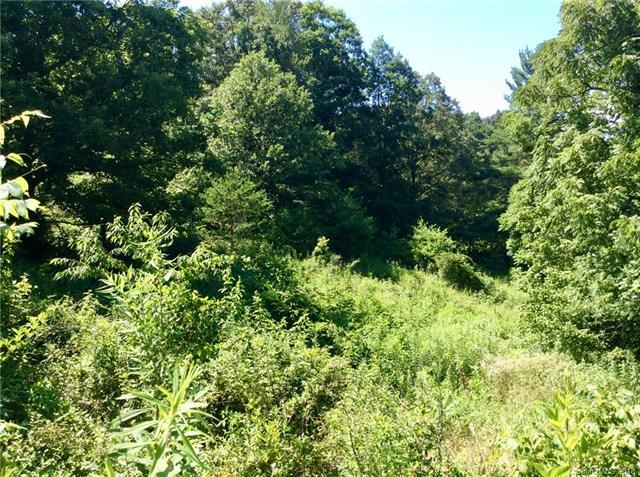 6 Woodchuck Cove #5, Alexander, NC 28701 (#3412974) :: RE/MAX Four Seasons Realty