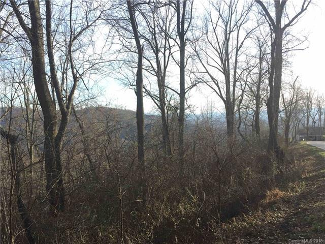 99999 Elk Mountain Scenic Highway #9, Asheville, NC 28804 (#3414088) :: RE/MAX Four Seasons Realty