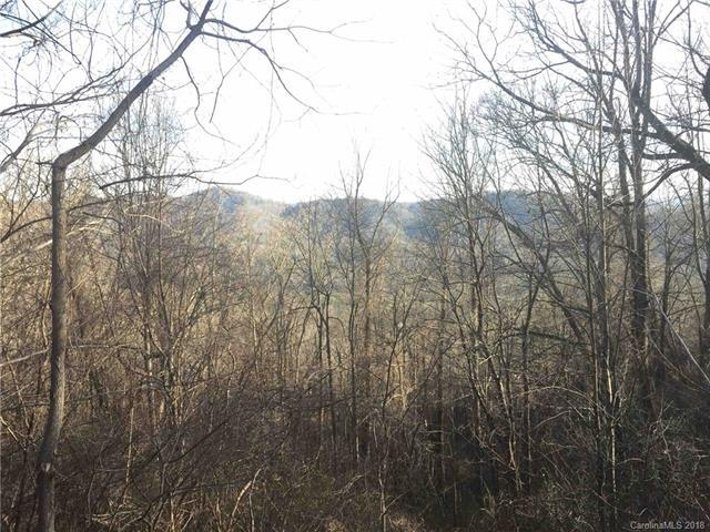 Lot 6 Elk Mountain Scenic Highway, Asheboro, NC 28804 (#3414126) :: RE/MAX Four Seasons Realty