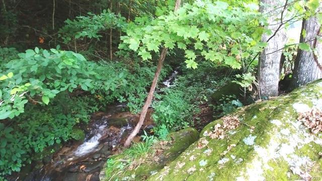 6 Crystal Tree Drive, Waynesville, NC 28785 (#3414167) :: Rinehart Realty