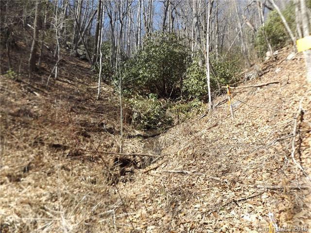9999 Sequoia Trail, Leicester, NC 28748 (#3414178) :: Puma & Associates Realty Inc.