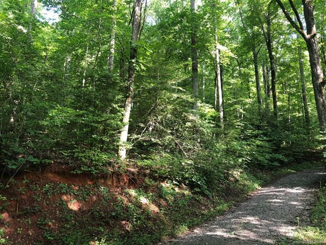 LOT 4 A Pole Cat Road, Saluda, NC 28773 (#3414281) :: MartinGroup Properties