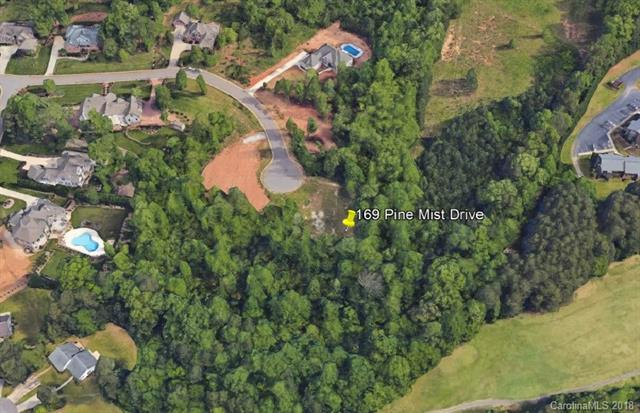 169 Pine Mist Drive #14, Mooresville, NC 28117 (#3414331) :: Exit Mountain Realty