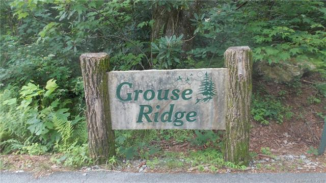 Lot 2 Grouse Ridge Lane Lot 2, Sapphire, NC 28774 (#3414361) :: LePage Johnson Realty Group, LLC