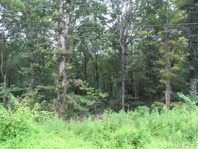 00 Hogback Mountain Road, Tryon, NC 28782 (#3414839) :: Puma & Associates Realty Inc.