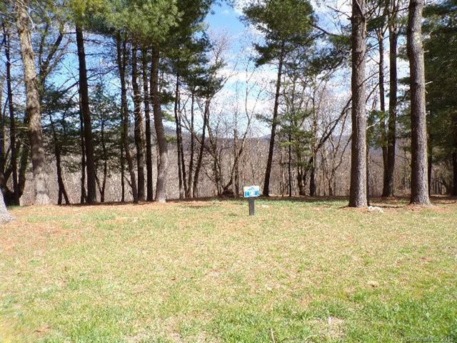 0 Dancing Bear Drive #180, Hendersonville, NC 28792 (#3415055) :: LePage Johnson Realty Group, LLC