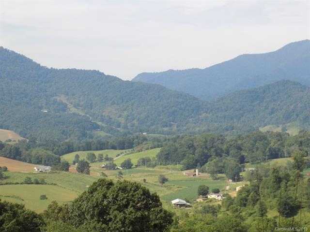 26 Bear Vista Trail, Waynesville, NC 28785 (#3415402) :: Roby Realty