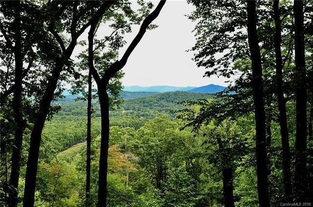 36 Featherstone Trail #44, Arden, NC 28704 (#3416082) :: Besecker Homes Team
