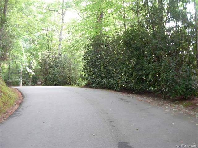 lot 1 Indian Lake Road - Photo 1